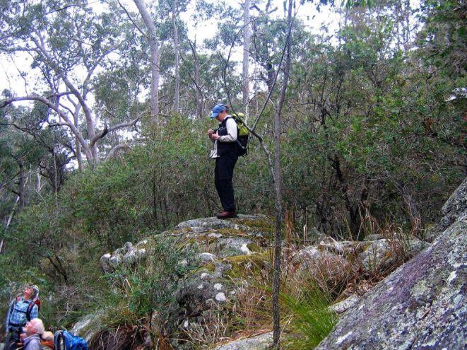 Donna's granite vantage point