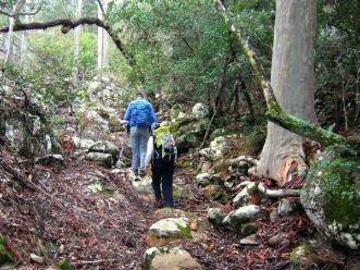 Walking the dry creek bed