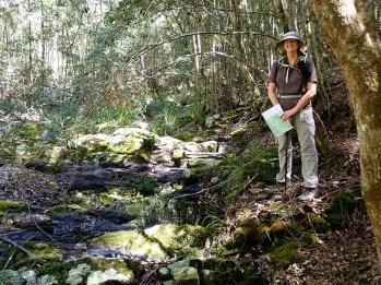 Leader Karen on the edge of the creek.