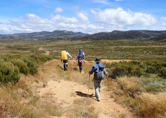 'Honeymooners' on the Greymare Trail.