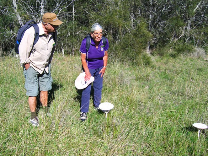 Leader Karen and Simeon examine mushrooms large enough to accommodate elves and fairies.