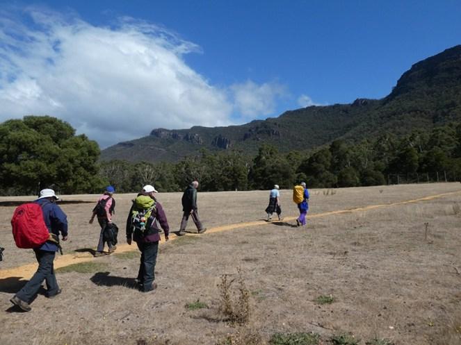 Walkers crossing an open paddock.