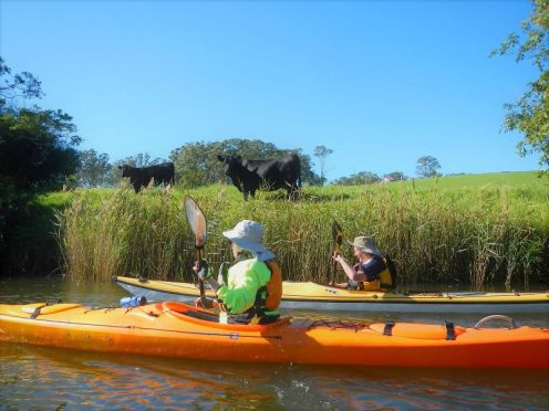 Paddling through farmland