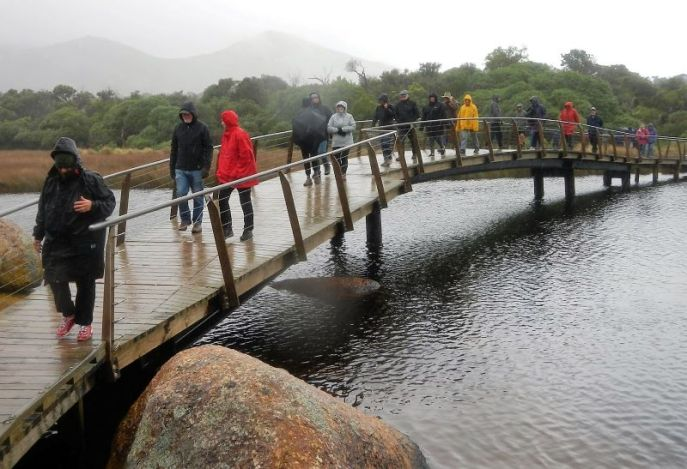 Tidal River footbridge in the pouring rain