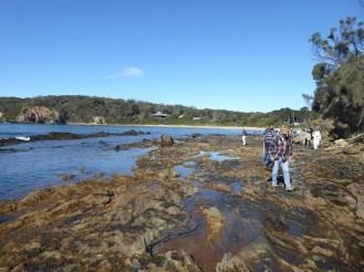 Rock platforms at low tide