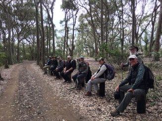 Socially distanced logs!
