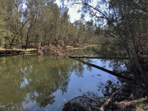 Benandarah Creek - the final destination
