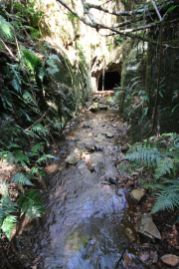 Tunnel 1 in creek, with stream flowing out