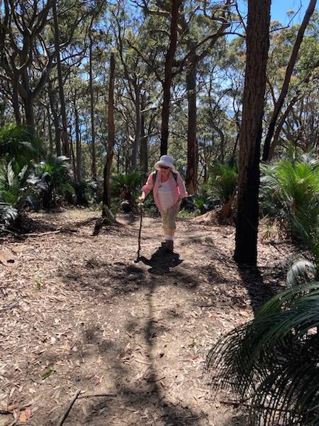 Niamh on the Burrawang Track