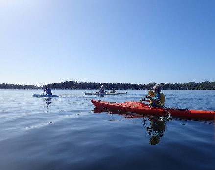 Paddlers setting out on calm water