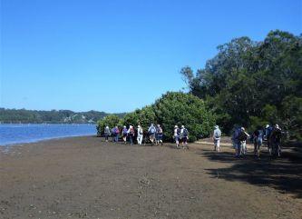 Weaving through the mangroves surrounding Quandolo Island