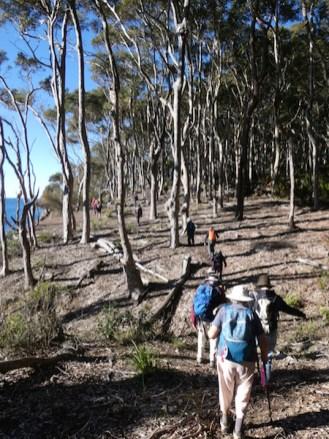 23 Walkers enjoying the sunshine and views