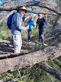 Mike, Donna and Tony negotiating fallen trees