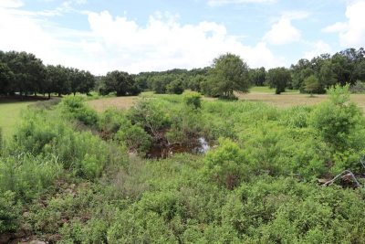 Fairhope Considering Plans For Nature Park