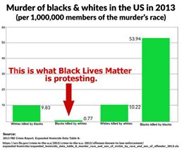 Murder of blacks & whites in US in 2013