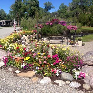 Flowers at Bayfield Riverside RV Park