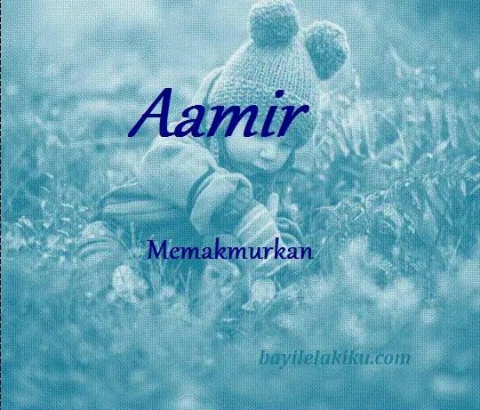 arti nama Aamir