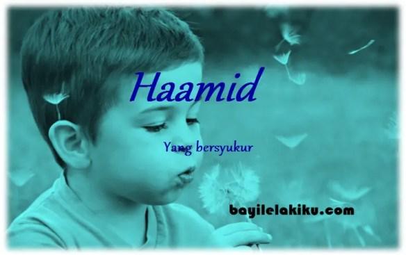 arti nama Haamid
