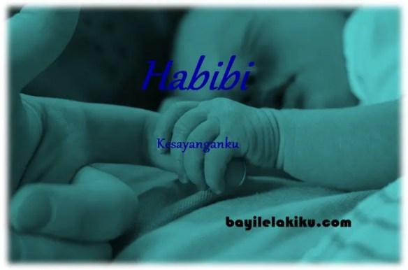 arti nama habibi