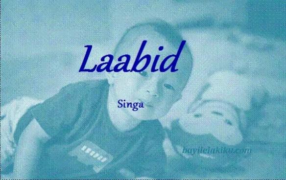 arti nama laabid