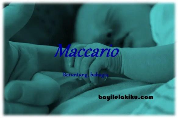 arti nama maccario