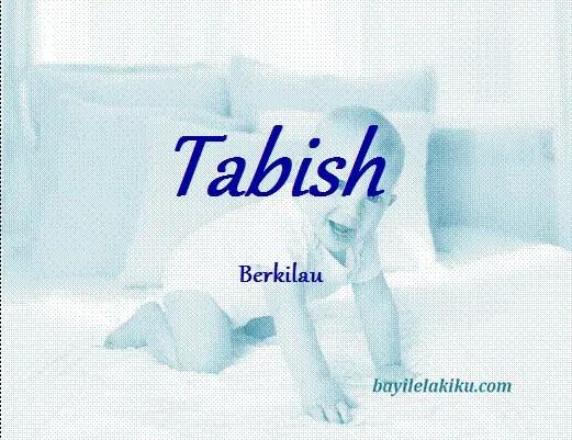 arti nama tabish