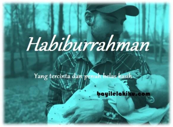 arti nama Habiburrahman