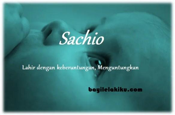 arti nama Sachio