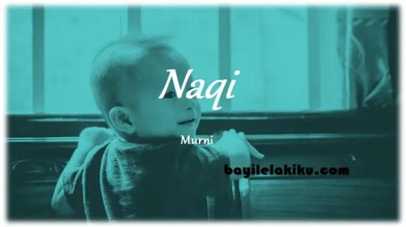 arti nama Naqi