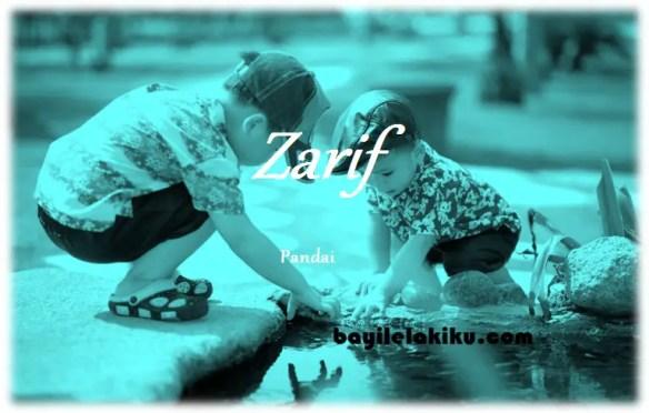 arti nama Zarif