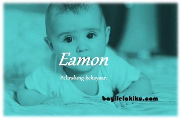 arti nama Eamon