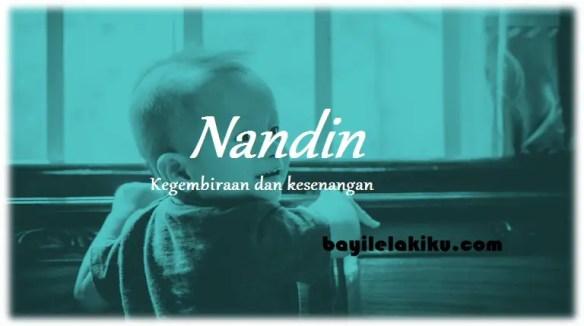arti nama Nandin