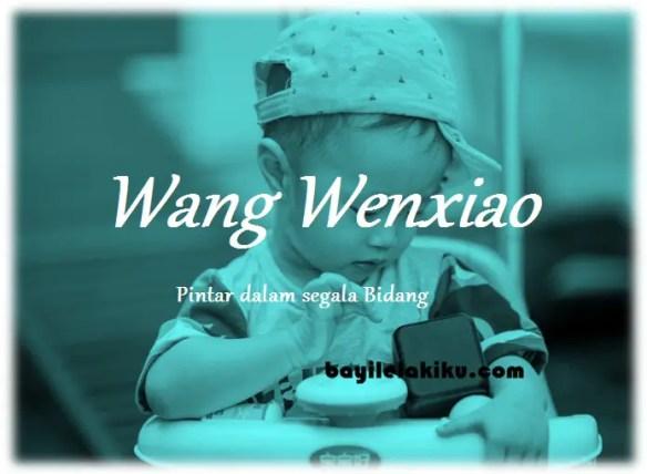 arti nama Wang Wenxiao