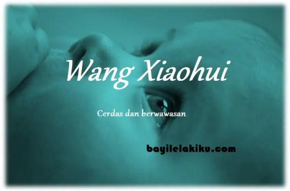 arti nama Wang Xiaohui
