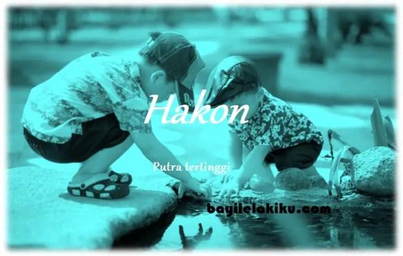 arti nama Hakon