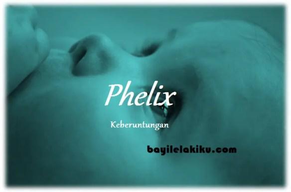 arti nama Phelix