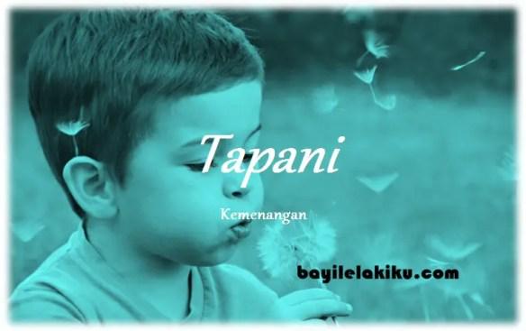 arti nama Tapani