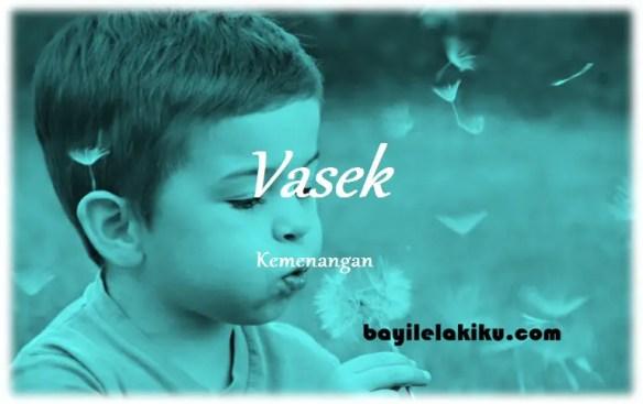 arti nama Vasek