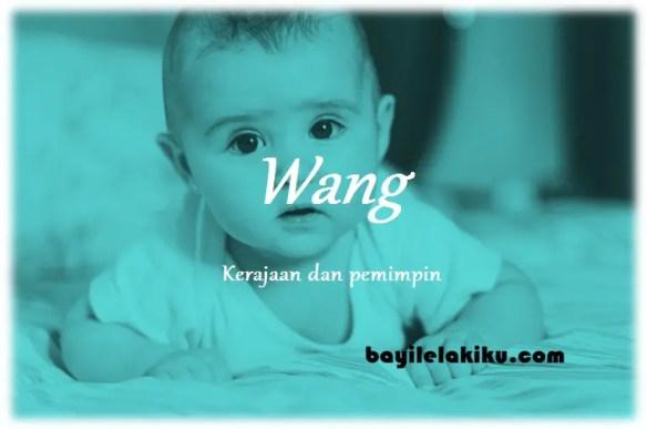 arti nama Wang