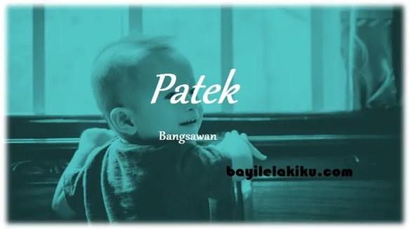 arti nama Patek