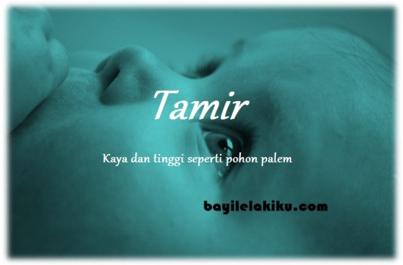 arti nama Tamir