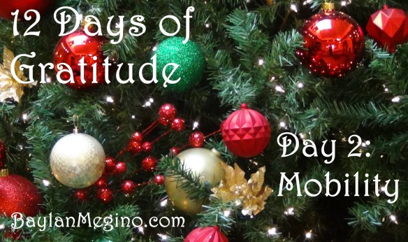 12 Days of Gratitude Day 2 Mobility by Baylan Megino