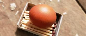Куры перестали нести яйца