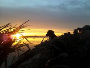 morningsunrise