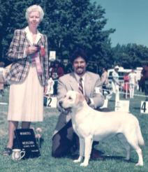 Breed Show Ring