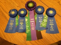 1st place ribbons