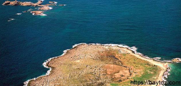 جزر النخيل في لبنان