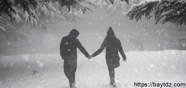 خواطر عن الشتاء والحب