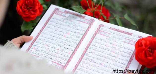 عدد قراءات القرآن