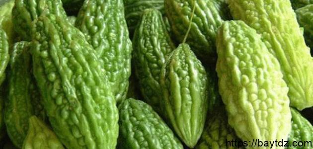 فوائد القرع الأخضر للرجيم